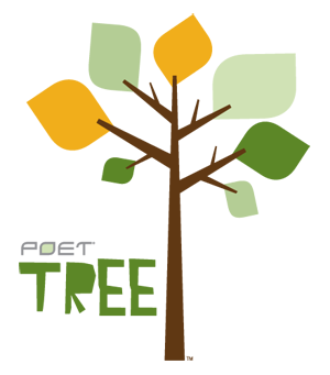 Image result for poetry tree